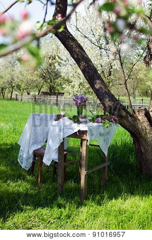 Small coffee table and a wooden chair under an apple tree