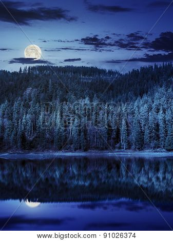 Lake Near The Mountain In Pine Forest At Night