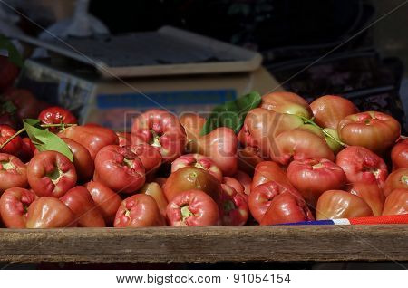 Fresh Wax Apples Or Bell Fruits