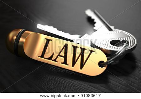 Law - Bunch of Keys with Text on Golden Keychain.