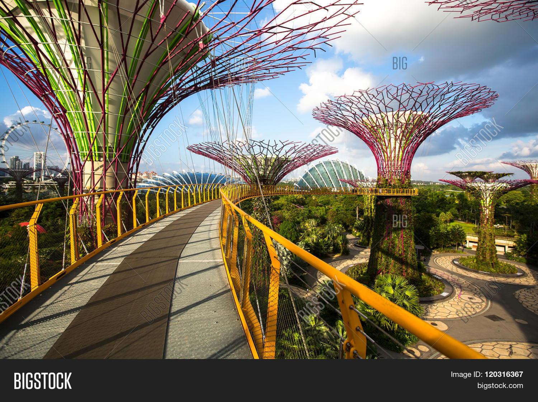SINGAPORE - FEB 19, Image & Photo (Free Trial) | Bigstock