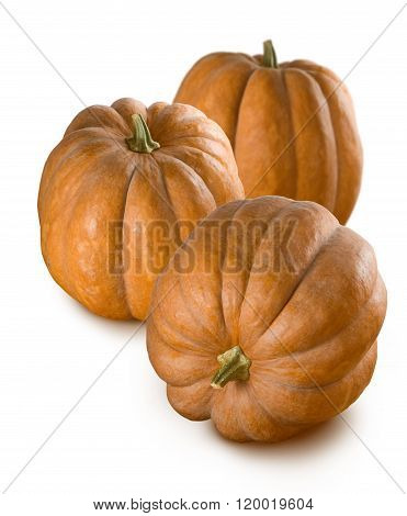 Isolated Image Of A Ripe Pumpkin Close Up