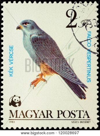 Red-footed Falcon (falco Vespertinus) On Postage Stamp