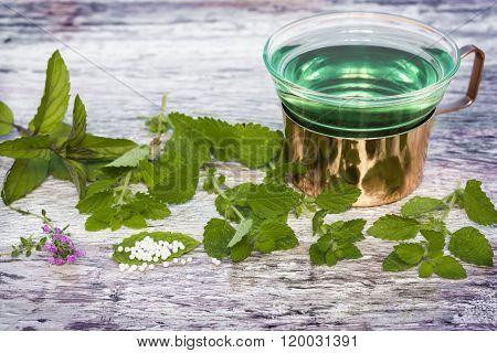Mint Tea, Globules, Medicinal Herbs