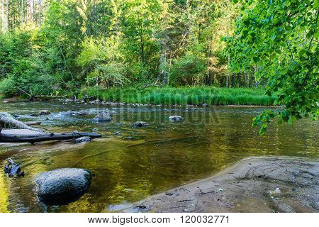 Summer River With Reflections