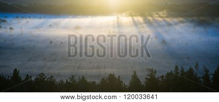 Foggy Colorful Morning Above Fields