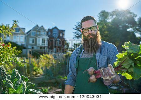 proud gardener showing freshly picked beets in urban communal garden