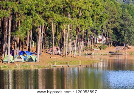Dome Tents Beside The Lake Among Pine Trees
