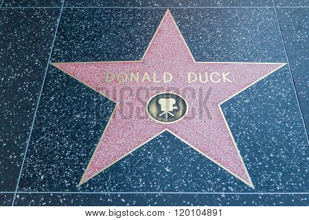 Donald Duck Hollywood Star