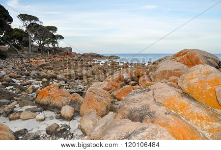 Orange Granite: Bunker Bay, Western Australia