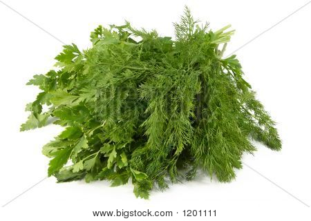 Juicy Fragrant Parsley And Fennel