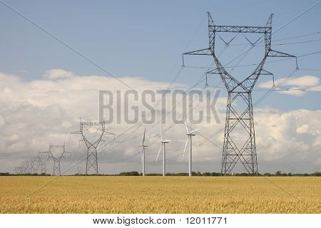 Wind turbines in a wheat field with pylons