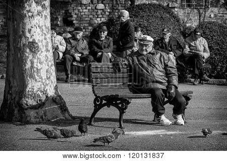 Belgrade Serbia - February 27 2016: Retirees enjoy the sun in the park on a bench and looking pigeons