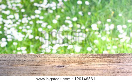 Wooden background in garden