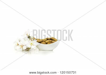 Isolated almond flowers with raw almonds