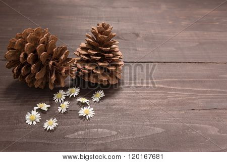 The Arrangement Of Pine Cones Are On The Wooden Background. Space For Your Text And Your Design.
