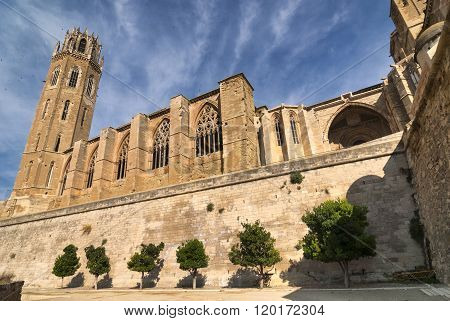 Lerida (Lleida Catalunya Spain) at summer. The historic city in gothic style poster