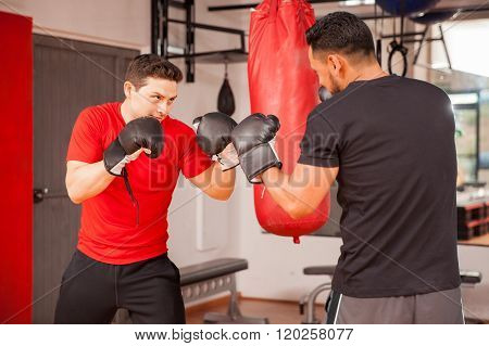 Young Men Sparring In Boxing Room