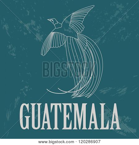 Guatemala. Bird of Paradise as a national symbol. Vector illustration