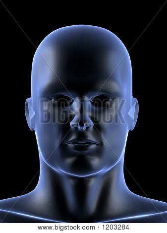 Human Head Shape