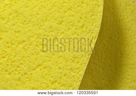 Yellow cosmetic sponge as background.