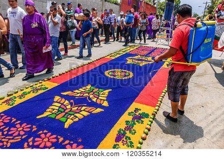 Watering Holy Week Carpet, Antigua, Guatemala