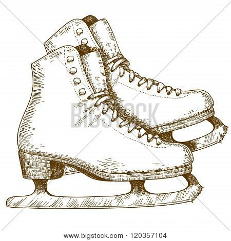 Engraving Illustration Of Ice Skating Shoes And Blades