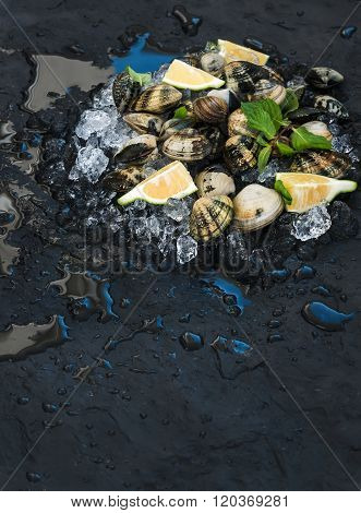 Fresh uncooked clams with lemon, herbs and spices on chipped ice over dark slate stone backdrop, top
