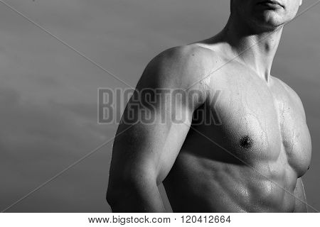 Men's Nude Chest