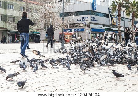 Doves On Konak Square In Old Part Of Izmir City
