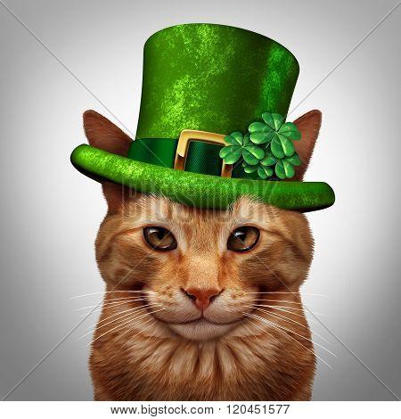 Saint Patricks Day Cat