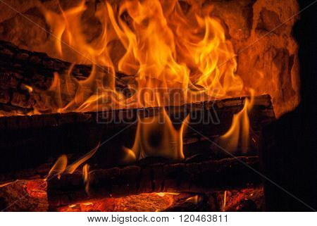 burning wooden logs with big fire flames