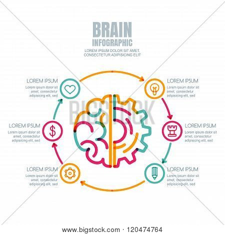 Brain And Gear Cog,  Isolated On White Background.