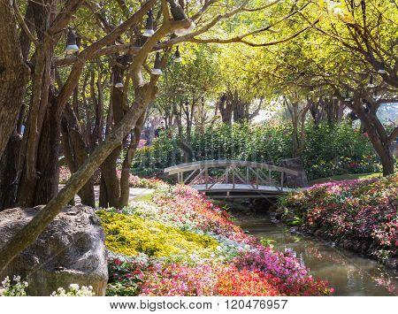 Wooden Bridge In Garden