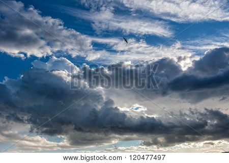 Big powerful storm clouds at summer with seagull