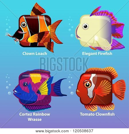 stylized fish are square