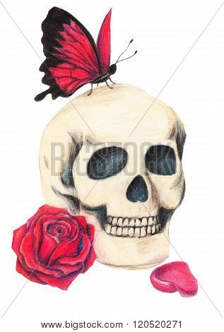 Skull, red rose and red butterfly