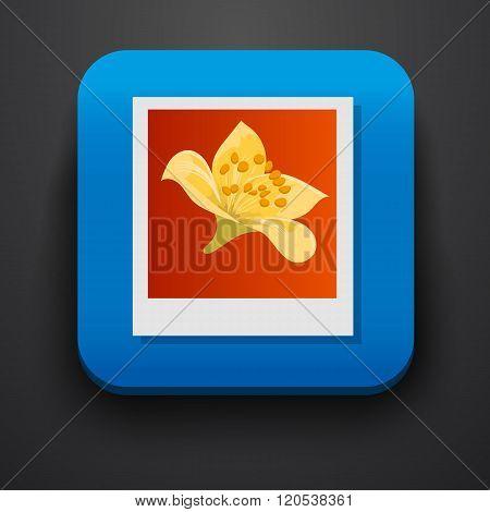 Polaroid photo symbol icon on blue