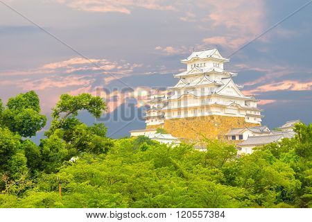 Himeji Jo Castle at Sunset above Tree Tops