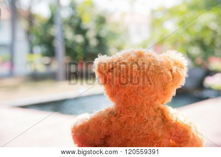 Lonely Bear Doll