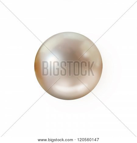 Single cream peach pearl isolated with no drop shadow