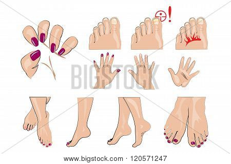hands feet and nails manicure healthy nails and nail fungus poster