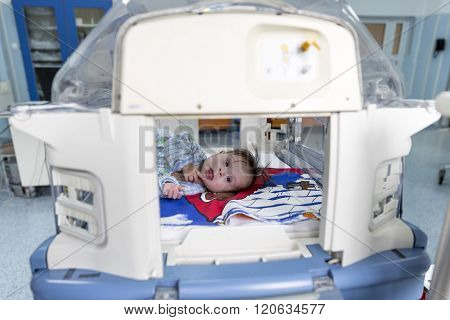 Baby In An Incubator Smiling