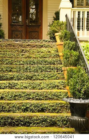 The Green Staircase