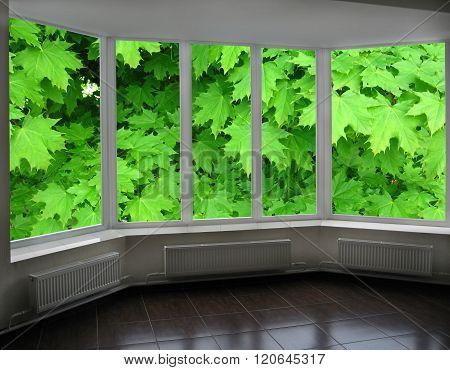 Plastic Windows Of Veranda Overlooking The Green Maple