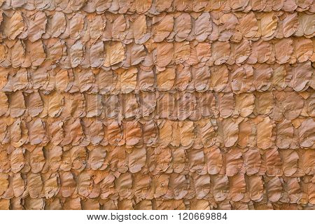 Decorative Dry Leaves On Traditional Wall