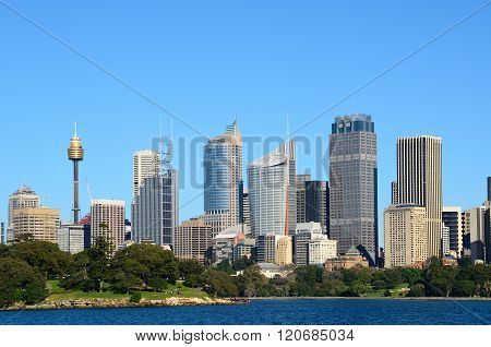 Sydney City With Trees In Foreground