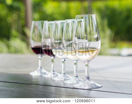 Wine tasting in Stellenbosch South Africa. From the front: blanc de noir chardonnay sauvignon blanc merlot cabernet sauvignon.