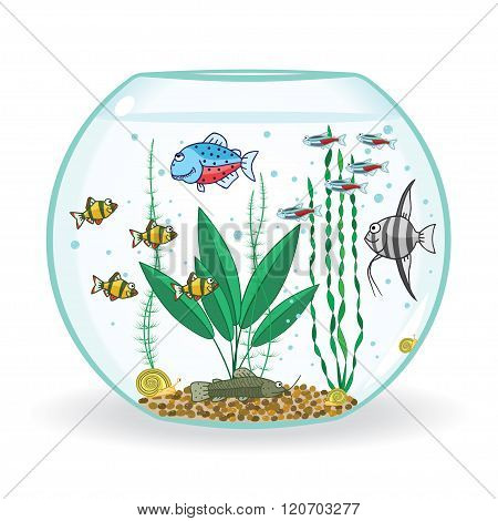 fishbowl with inhabitant, vector illustration