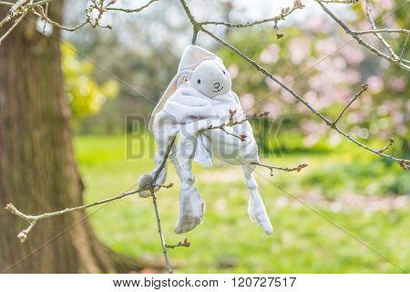 Lost Bunny Toy On A Tree